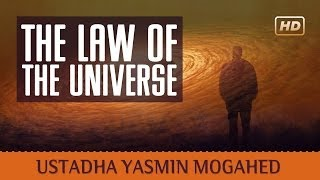 The Law of The Universe - Yasmin Mujahid