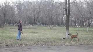Стафф без тренировок и подготовок, проверка НС.MOV(, 2012-04-10T08:14:51.000Z)