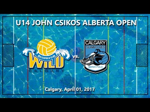 Wild  - Seawolves, U14 Alberta Open Water Polo Game