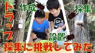 昆虫採集☆カブトムシ☆クワガタムシ トラップ採集に挑む!】(くろねこチ...