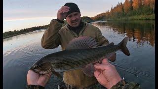 Рыбалка на севере  Часть 3  Хариус продолжает долбить