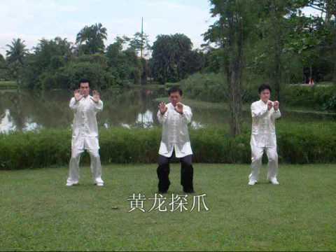 Download Xingyi Kempo Health Enchancing Exercises