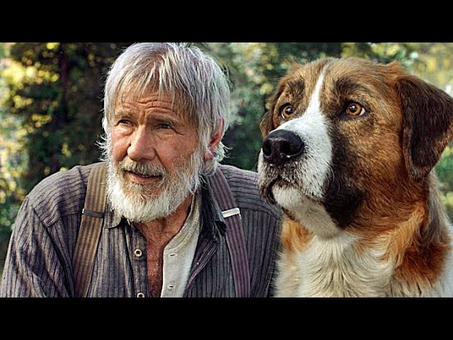 RUF DER WILDNIS | Trailer deutsch german [HD]