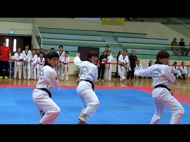 Acme Taekwondo (2016)