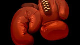 Boxer App Tutorial