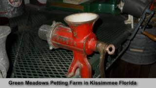 Green Meadows Farms near Kissimmee Florida