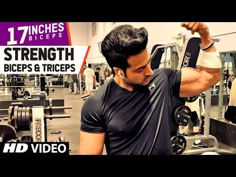 Strength - Biceps & Triceps (17 INCHES) Program By Guru Mann