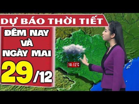 Dự báo thời tiết hôm nay và ngày mai 29/12 | Rét Đậm Rét Hại | Dự báo thời tiết đêm nay mới nhất