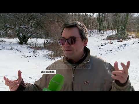 Dëborë në Dajt, e diel argëtimi për kryeqytetasit - Top Channel Albania - News - Lajme