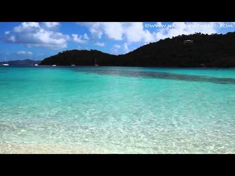 Hawksnest Bay in Virgin Islands National Park (1080p)