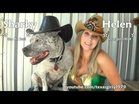 Bully Parade 2011 in Austin Texas. Win FREE Pit Bull Sharky Shirt - Comment & Costume Contest!!