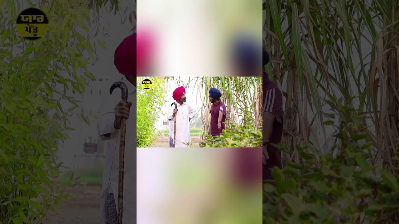 ਬੈਂਗਣਾਂ ਦਾ ਬਾਗ | ਖਵਾ ਦਿੱਤਾ ਭੜਥਾ | Funny Punjabi Video