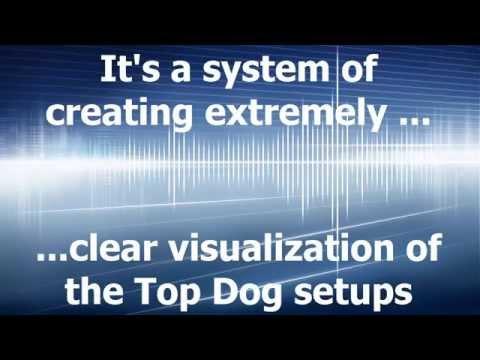 Top Dog Visualized Trader for NinjaTrader - Special Offer - Top Dog