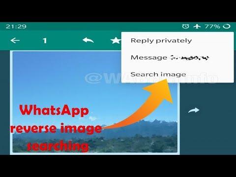 WhatsApp beta 2.19.73 tests built-in reverse image searching|| New transgender emojis Mp3
