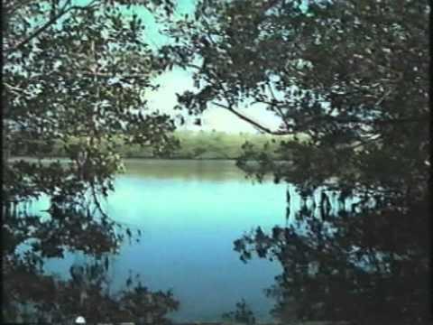 1991 CLT Video.mp4