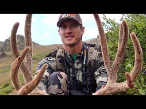 Big Colorado Mule Deer Buck - Archery Hunt 2015