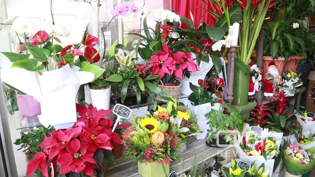 Alberts flowers a florist or flower shop in brisbane offering flower alberts flowers a florist or flower shop in brisbane offering flower arrangement or flower delivery izmirmasajfo