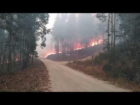 Acto de recoñecemento aos afectados pola catástrofe dos incendios en Ponteareas