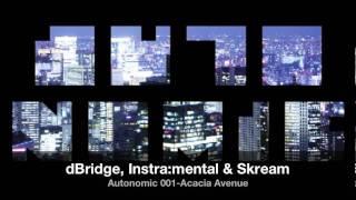 dBridge, Instra:mental & Skream - NOMIC 001 - Acacia Avenue