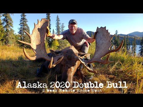 2020 Alaska Moose Hunt, Two Bulls Down!
