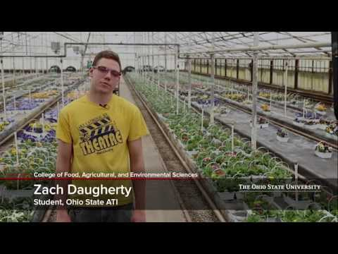 Internships at The Ohio State University Agricultural Technical Institute