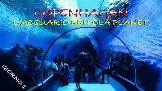 COPENAGHEN: GIORNO 1 , Acquario Den Bla Planet