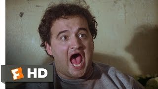 Toga! Toga! - Animal House (6/10) Movie CLIP (1978) HD