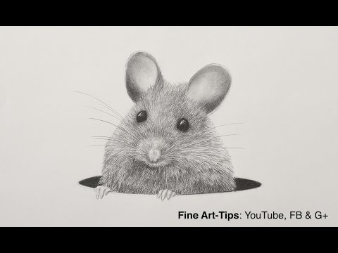 how-to-draw-a-mouse-with-a-mechanical-pencil---animal-hair---rat-fur