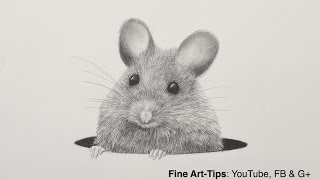 How to Draw a Mouse With a Mechanical Pencil - Animal Hair - Rat Fur