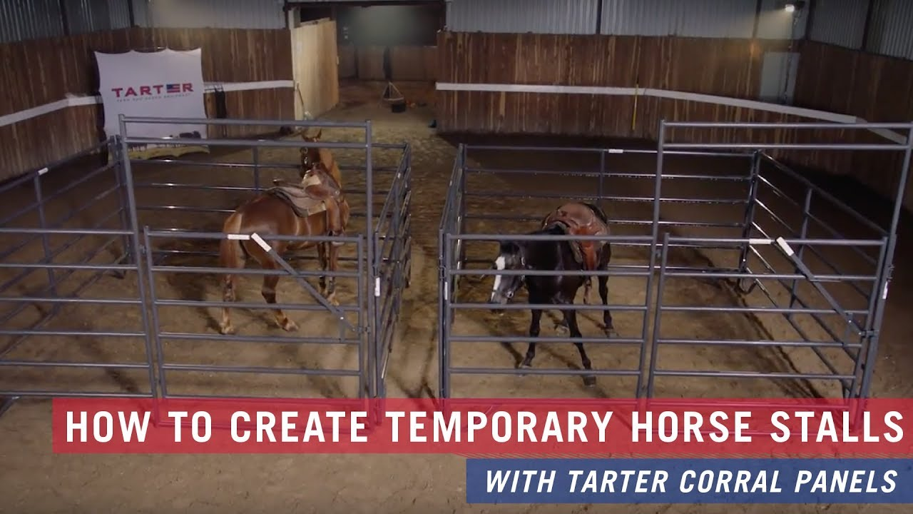 How To Create A Temporary Horse Stall With Tarter Corral