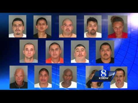 16 arrested in Santa Cruz County gang sweep