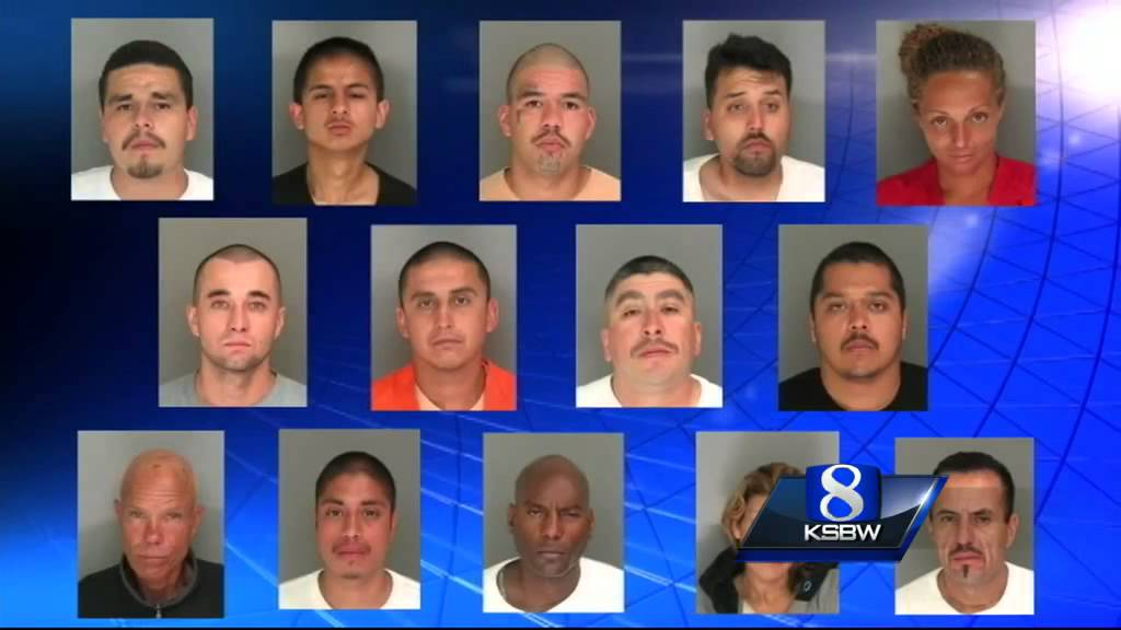 16 arrested in Santa Cruz County gang sweep