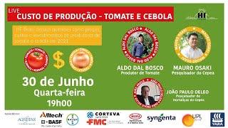 Live HF Brasil - Custo de produção: tomate e cebola