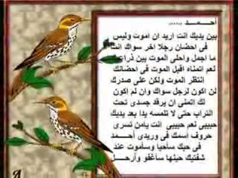 احلىئ مقطع حب عن اسم احمد Youtube