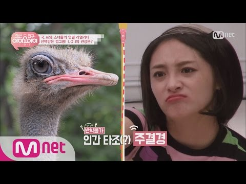 [LANCableFriend I.O.I] No one can disagrees, Zhou Jie Qiong has an ostrich-ish face 20160722 EP.03