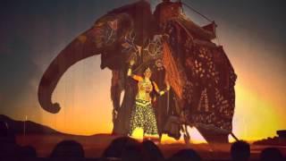 ~*~Rajasthani Kalbeliya Dance Improvisation ~*~ Schirin Chams-Diba  ~*~