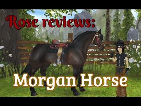 Star Stable Online; Rose reviews ~ Morgan Horse
