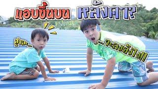แย่แล้ว!!! ชีต้ากับน้องซีซ่าแอบขึ้นไปบนหลังคา ขึ้นไปทำอะไรกัน? | ชีต้าพาชิว