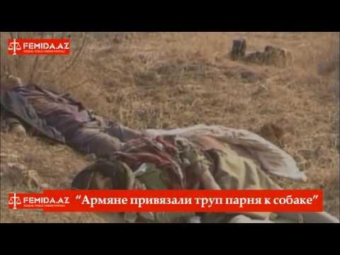 Армяне привязали труп парня к собаке