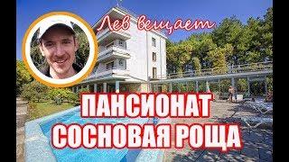 Официальный канал пансионата Сосновая роща, Пицунда, Абхазия