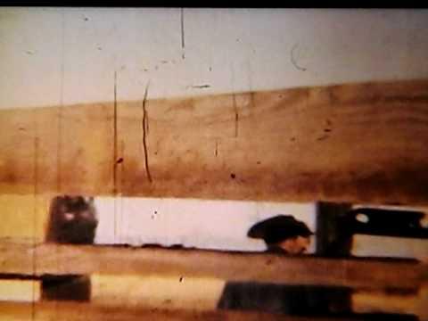 Amarillo Texas 1961