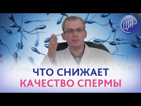 КАЧЕСТВО СПЕРМЫ. ПОЧЕМУ СНИЖАЕТСЯ качество эякулята. Андролог-уролог ЦИР Живулько А.Р.