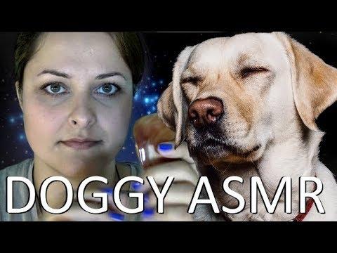 🐶 50 Whispered Rap Dog commands 🐶 /w Reiki ASMR 🐶 (skip to 505s)