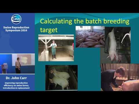 John Carr, Ceva Swine Reproduction Symposium 2016 Presentation