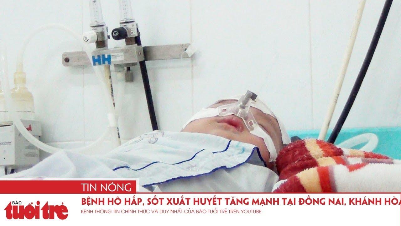 Bệnh hô hấp, sốt xuất huyết tăng mạnh tại Đồng Nai, Khánh Hòa