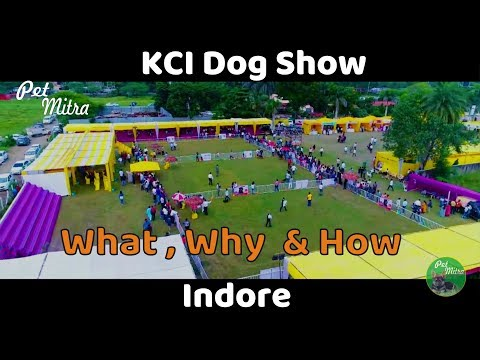 Indore KCI Dog Show | How to register dog for KCI Show