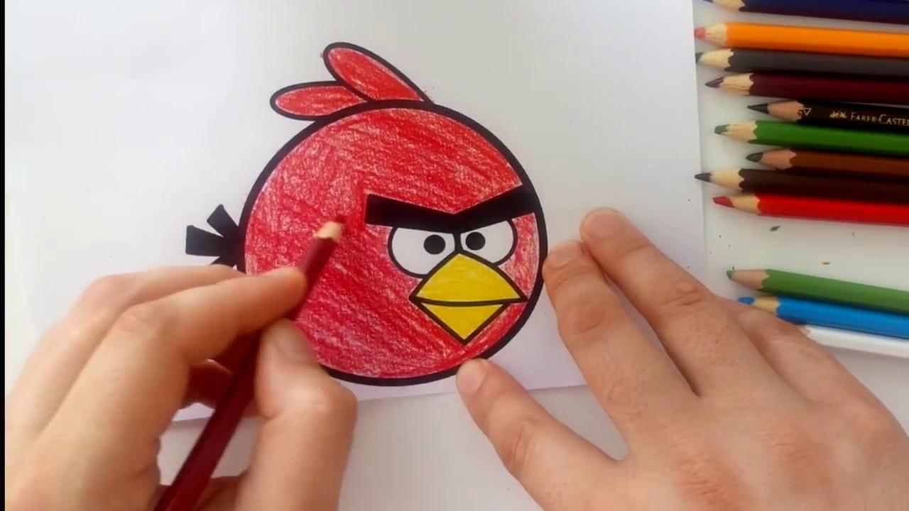 Angry Birds Boyama Oyunu Ust Ev Boyama Sayfasi