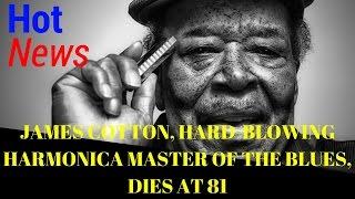 james cotton died at 81| james cotton death| james cotton dead