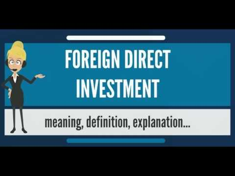 What is FOREIGN DIRECT INVESTMENT? What does FOREIGN DIRECT