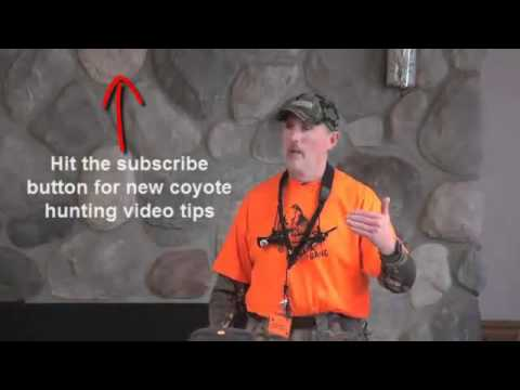 How To Hunt Michigan Coyotes